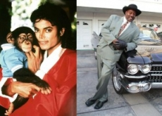 Michael Jackson's Chimp Bubbles Attacks Bodyguard