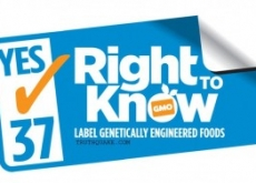 Genetically Modified Food Labeling Vote-Fraud: Prop 37 3.3 Million Votes Uncounted